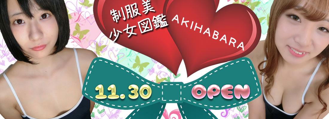 制服オーディションの公式ライバル「秋葉原制服美少女図鑑」